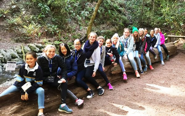 Students sitting on a tree log for photo