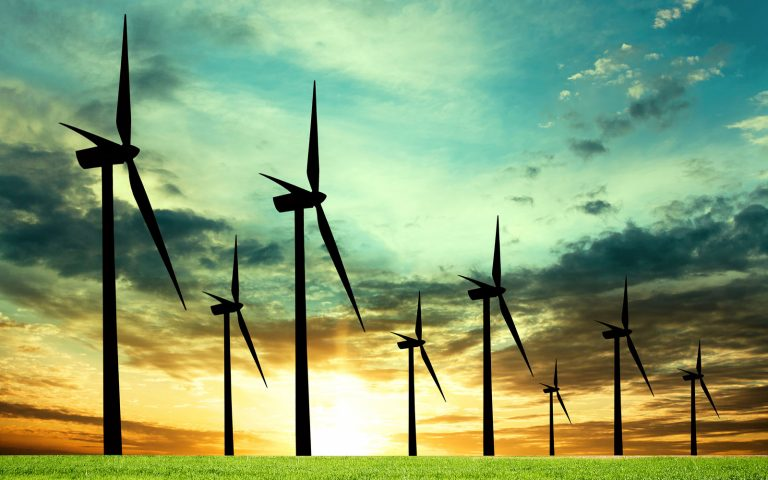 Wind Farm Environmental Tour