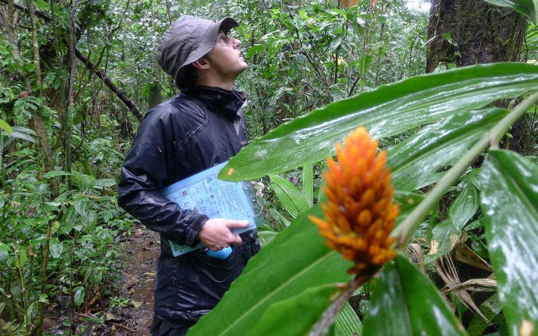 Conservation Service Learning Tour - Costa Rica