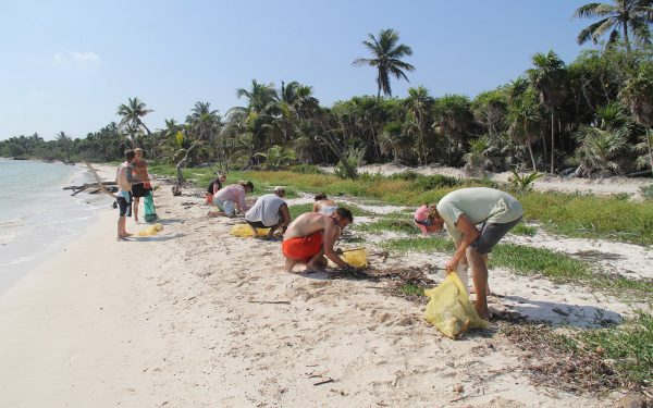 Cleaning the beach Marine Awareness Service Learning Tour Mexico
